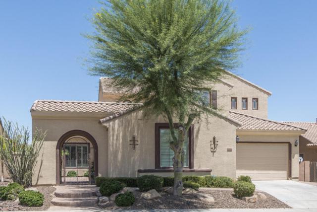 6918 W Mazatzal Drive, Peoria, AZ 85383 (MLS #5615923) :: The Laughton Team