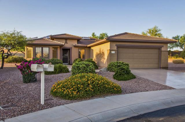 20049 N Organ Pipe Drive, Surprise, AZ 85374 (MLS #5615970) :: Desert Home Premier