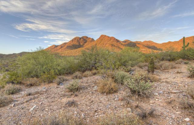 21524 N 110TH Place, Scottsdale, AZ 85255 (MLS #5616665) :: Kepple Real Estate Group