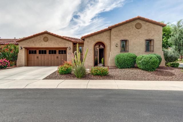 13032 W Desert Vista Trail, Peoria, AZ 85383 (MLS #5616745) :: Desert Home Premier