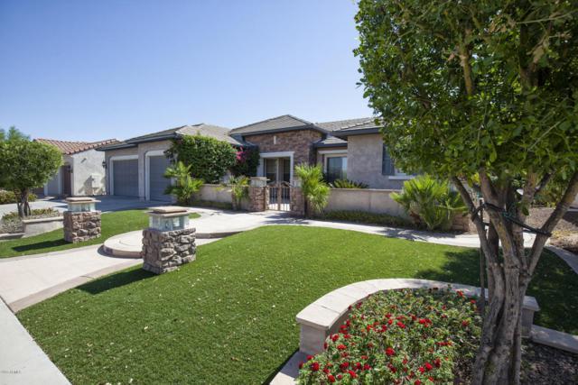 20097 N 264TH Avenue, Buckeye, AZ 85396 (MLS #5616822) :: Desert Home Premier