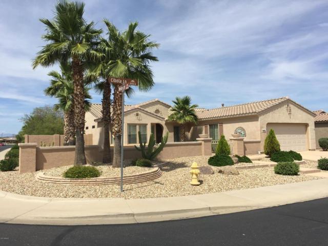 16606 W Cibola Lane, Surprise, AZ 85387 (MLS #5617396) :: Desert Home Premier