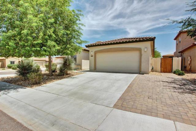 5443 W Molly Lane, Phoenix, AZ 85083 (MLS #5617522) :: The Laughton Team