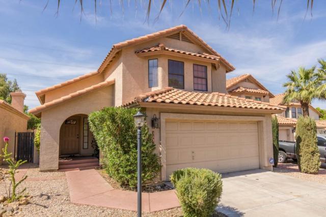 1626 E Villa Theresa Drive, Phoenix, AZ 85022 (MLS #5617719) :: Cambridge Properties
