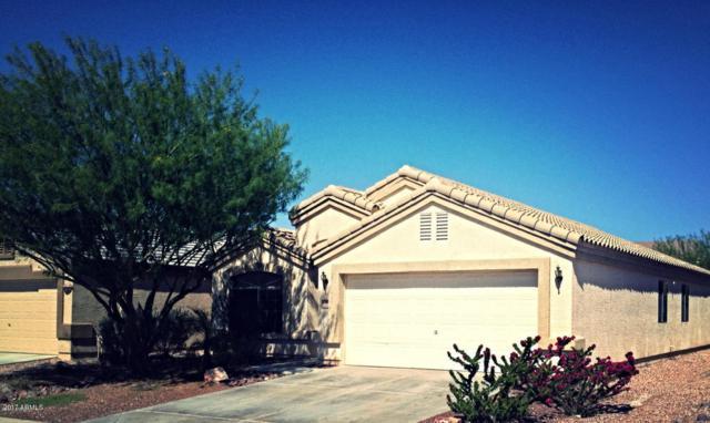 23898 W Desert Bloom Street, Buckeye, AZ 85326 (MLS #5617943) :: Desert Home Premier