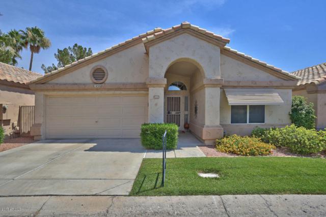 14586 W Moccasin Trail, Surprise, AZ 85374 (MLS #5618000) :: Desert Home Premier