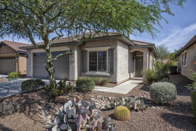 26832 W Mohawk Lane, Buckeye, AZ 85396 (MLS #5618119) :: Desert Home Premier