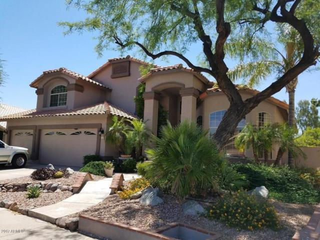 7838 W Kerry Lane, Glendale, AZ 85308 (MLS #5618197) :: Occasio Realty