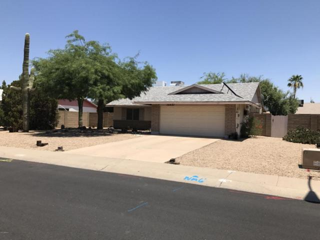 16821 N 31ST Drive, Phoenix, AZ 85053 (MLS #5618219) :: Cambridge Properties