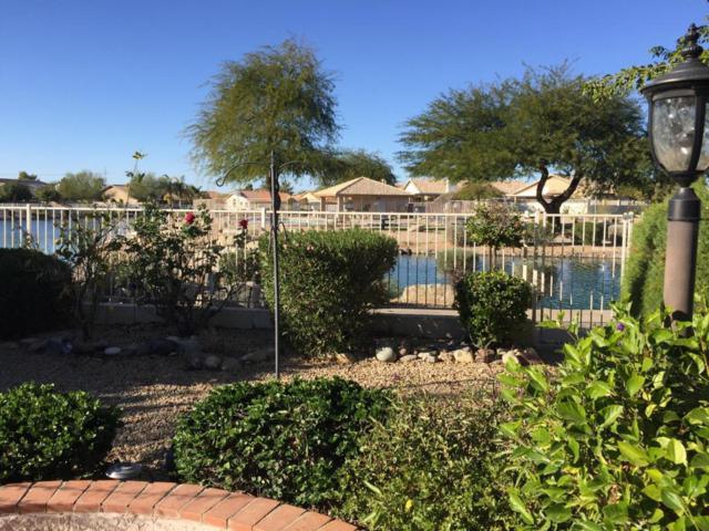 10846 W Mohawk Lane, Sun City, AZ 85373 (MLS #5618681) :: Desert Home Premier