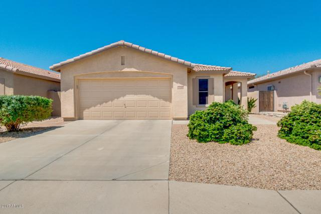 19920 N 108TH Avenue, Sun City, AZ 85373 (MLS #5618892) :: Desert Home Premier