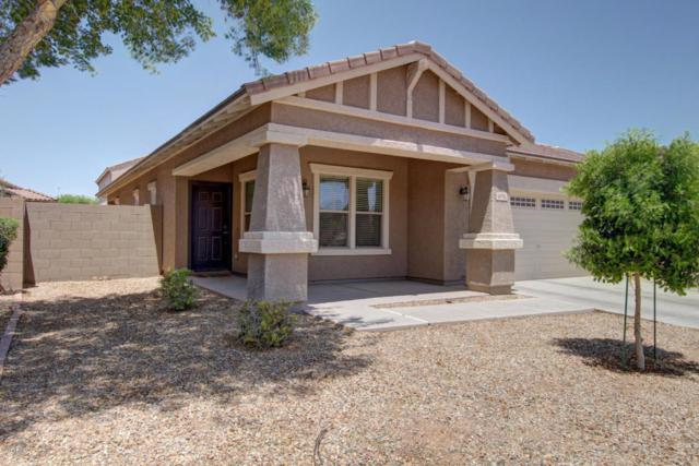 16916 W Cocopah Street, Goodyear, AZ 85338 (MLS #5618926) :: Kortright Group - West USA Realty