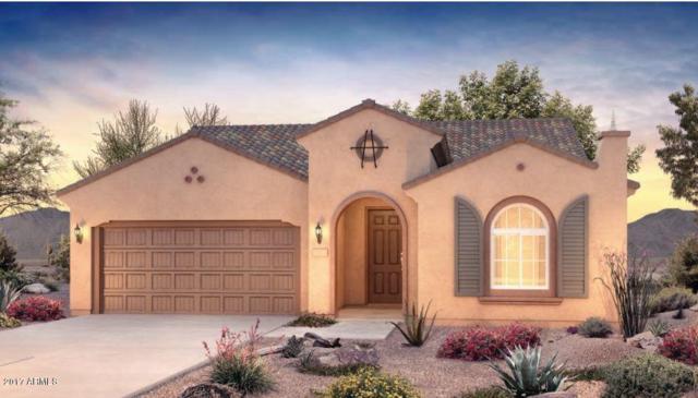27463 W Irma Lane, Buckeye, AZ 85396 (MLS #5618946) :: Desert Home Premier