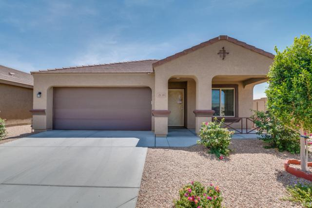 2139 S 215TH Drive, Buckeye, AZ 85326 (MLS #5619422) :: Desert Home Premier