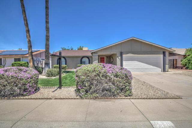 4940 W Charleston Avenue, Glendale, AZ 85308 (MLS #5619435) :: Occasio Realty