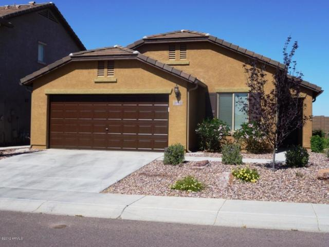 3022 N Daisy Drive, Florence, AZ 85132 (MLS #5619911) :: RE/MAX Home Expert Realty