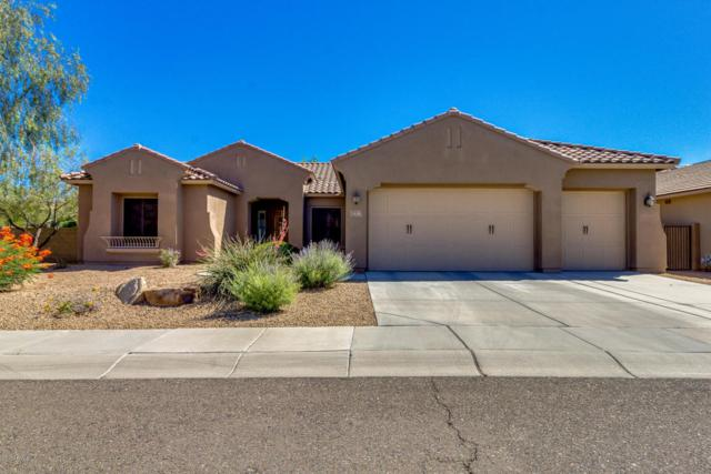 5638 W Spur Drive, Phoenix, AZ 85083 (MLS #5620324) :: The Laughton Team