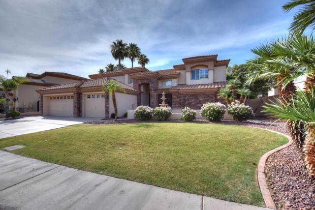 5878 W Del Lago Circle, Glendale, AZ 85308 (MLS #5620760) :: The Laughton Team
