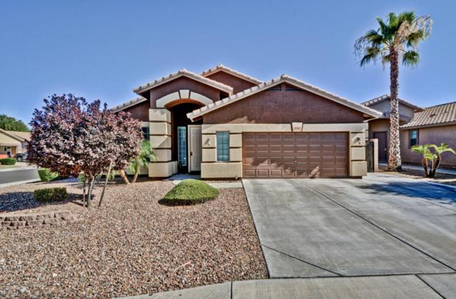 8967 W Runion Drive, Peoria, AZ 85382 (MLS #5620918) :: The Laughton Team