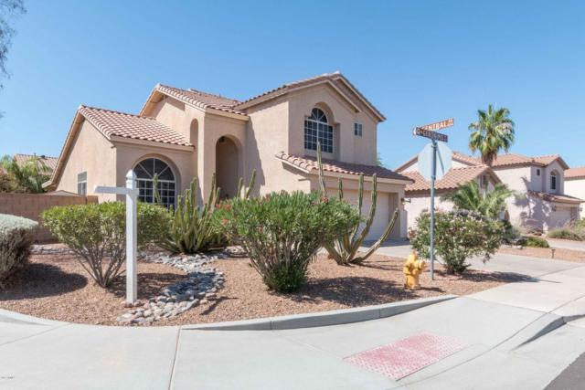 1280 W Geronimo Place, Chandler, AZ 85224 (MLS #5621087) :: Sibbach Team - Realty One Group