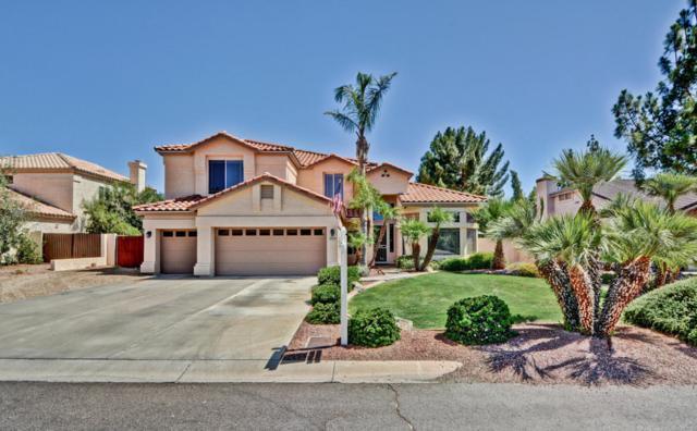6333 W Bluefield Avenue, Glendale, AZ 85308 (MLS #5621099) :: The Laughton Team