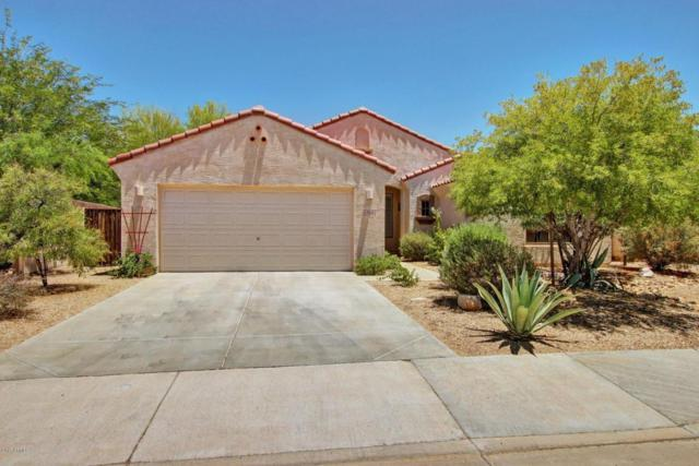 17522 W Desert Sage Drive, Goodyear, AZ 85338 (MLS #5621106) :: Kortright Group - West USA Realty
