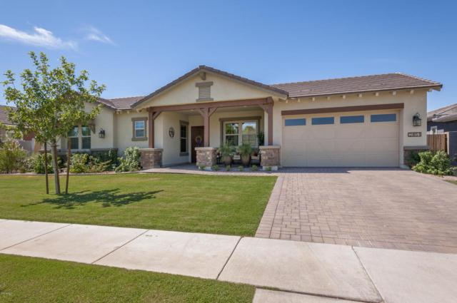 2851 E Silo Drive, Gilbert, AZ 85296 (MLS #5621333) :: The Bill and Cindy Flowers Team