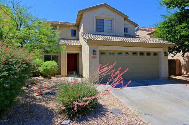 4757 E Amber Sun Drive, Cave Creek, AZ 85331 (MLS #5621402) :: The Laughton Team