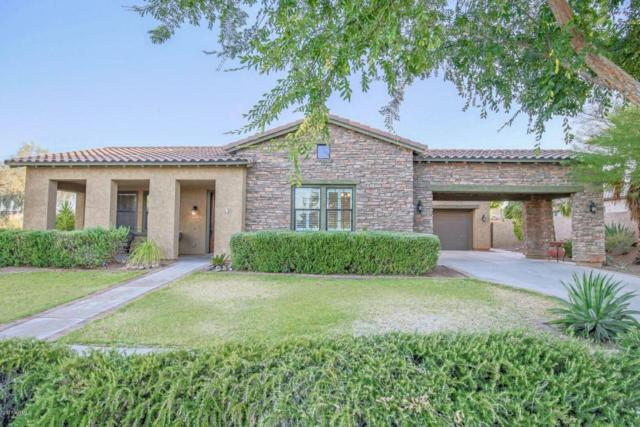 20513 W Canyon Drive, Buckeye, AZ 85396 (MLS #5621450) :: Kortright Group - West USA Realty