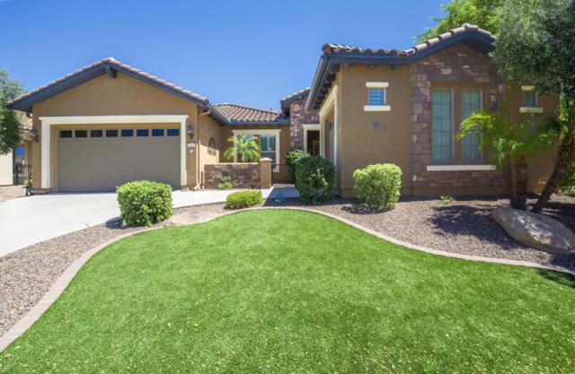 26367 W Tonopah Drive, Buckeye, AZ 85396 (MLS #5621731) :: Desert Home Premier