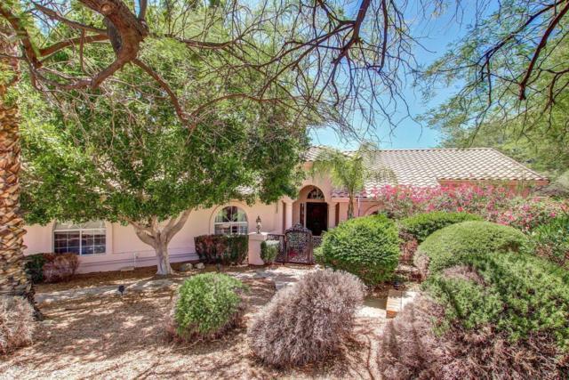 11064 N Garland Circle, Fountain Hills, AZ 85268 (MLS #5621855) :: Kelly Cook Real Estate Group