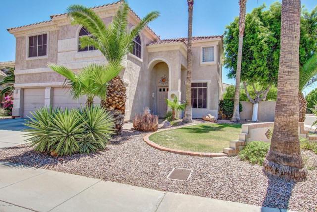 19405 N 61st Avenue, Glendale, AZ 85308 (MLS #5621917) :: The Laughton Team