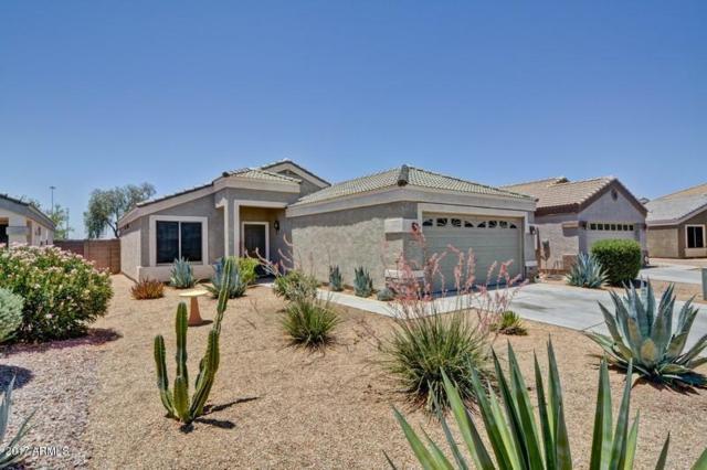 14812 N El Frio Street, El Mirage, AZ 85335 (MLS #5621967) :: Kelly Cook Real Estate Group