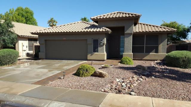 9020 W Runion Drive, Peoria, AZ 85382 (MLS #5622000) :: The Laughton Team