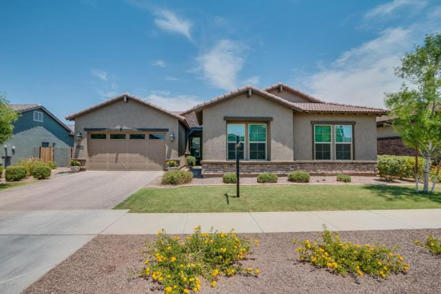 7406 E Posada Avenue, Mesa, AZ 85212 (MLS #5622170) :: The Bill and Cindy Flowers Team