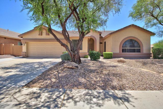 4103 E Andrea Drive, Cave Creek, AZ 85331 (MLS #5622175) :: Kelly Cook Real Estate Group