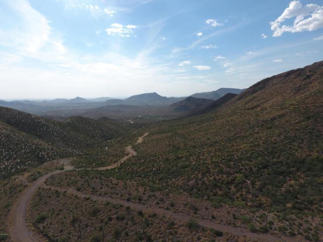 43101 N Fleming Springs Road, Cave Creek, AZ 85331 (MLS #5622304) :: Kelly Cook Real Estate Group