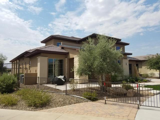 12703 W Desert Vista Trail, Peoria, AZ 85383 (MLS #5622340) :: Desert Home Premier