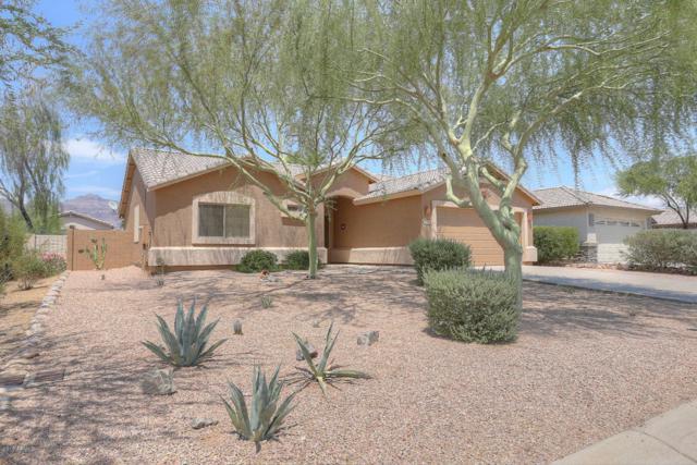 8900 E Amber Sun Way, Gold Canyon, AZ 85118 (MLS #5622349) :: The Bill and Cindy Flowers Team