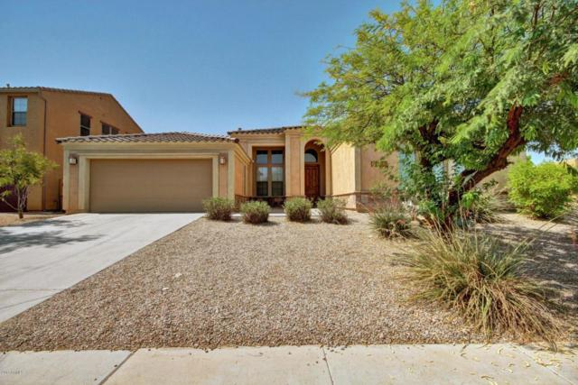 18233 W Estes Way, Goodyear, AZ 85338 (MLS #5622379) :: Kortright Group - West USA Realty
