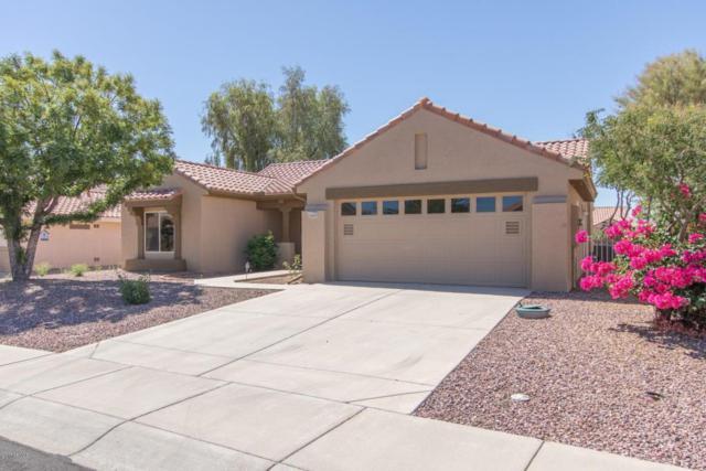 14624 W Horizon Drive, Sun City West, AZ 85375 (MLS #5622660) :: Kelly Cook Real Estate Group