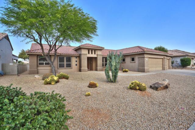 17622 N Ironhorse Drive, Surprise, AZ 85374 (MLS #5622744) :: Desert Home Premier