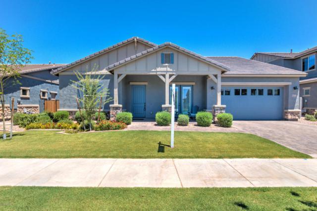 4272 E Morrison Ranch Parkway, Gilbert, AZ 85296 (MLS #5622765) :: The Bill and Cindy Flowers Team