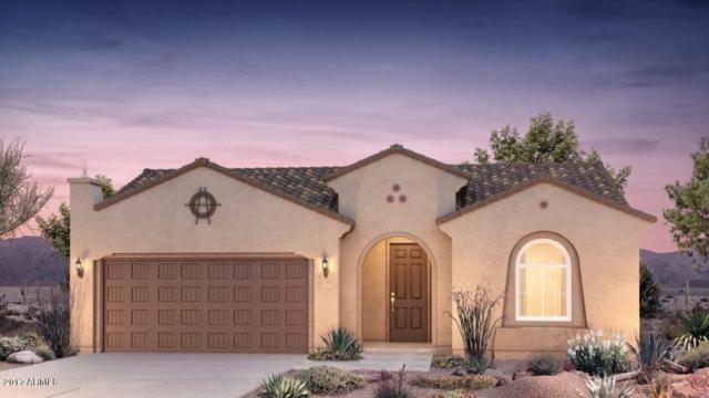 26665 W Melinda Lane, Buckeye, AZ 85396 (MLS #5622778) :: Desert Home Premier