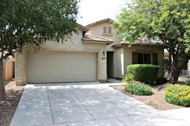 5133 W Molly Lane, Phoenix, AZ 85083 (MLS #5622878) :: The Laughton Team