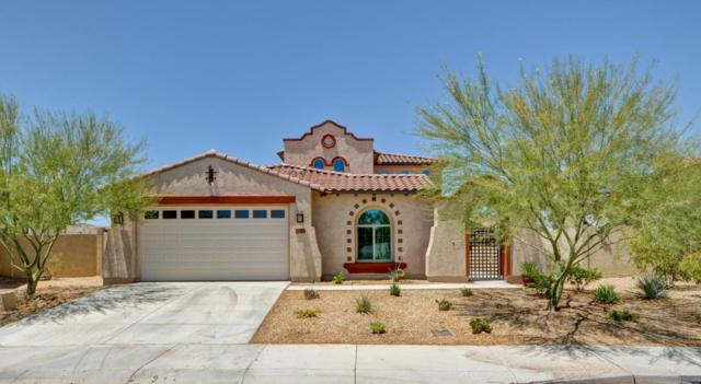 18132 W Thunderhill Place, Goodyear, AZ 85338 (MLS #5622991) :: Kortright Group - West USA Realty