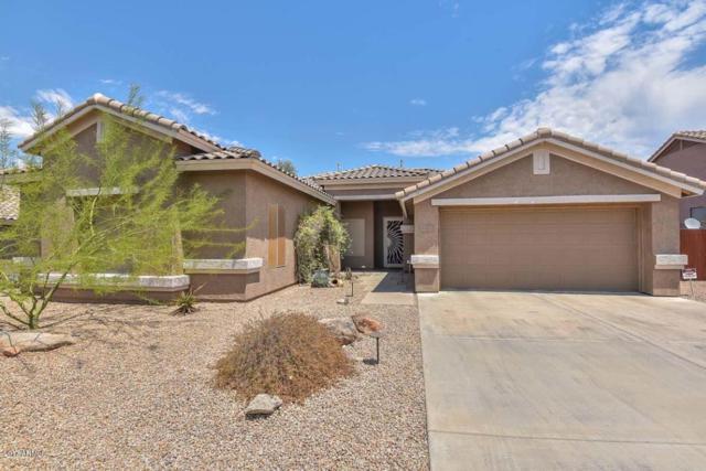 5326 E Thunder Hawk Road, Cave Creek, AZ 85331 (MLS #5622997) :: Kelly Cook Real Estate Group