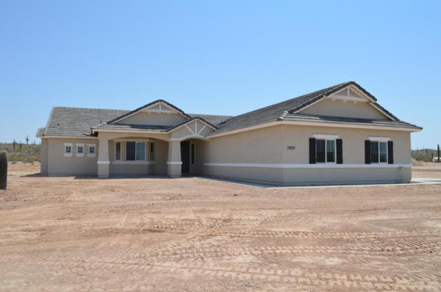 2929 W Moon Dust Trail, Queen Creek, AZ 85142 (MLS #5623025) :: The Bill and Cindy Flowers Team