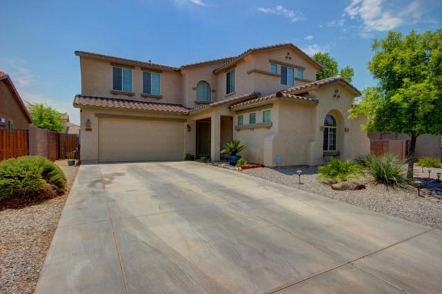 7141 W Carter Road, Laveen, AZ 85339 (MLS #5623050) :: Kelly Cook Real Estate Group