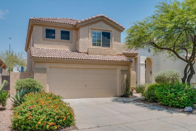 4414 E Creosote Drive, Cave Creek, AZ 85331 (MLS #5623069) :: Kelly Cook Real Estate Group